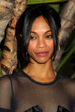 Zoe Saldana Photo - 2 December 2010 - Beverly Hills California - Zoe Saldana Childrens Defense Fund-California 20th Annual Beat the Odds Awards held at The Beverly Hills Hotel Photo Byron PurvisAdMedia