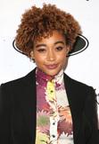 Amandla Stenberg Photo - 21 February 2019 - Beverly Hills California - Amandla Stenberg 12th Annual ESSENCE Black Women In Hollywood Awards Luncheon held at the Beverly Wilshire Photo Credit Faye SadouAdMedia