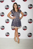 Angelique Rivera Photo - Angelique Riveraat the Disney ABC TV 2016 TCA Party The Langham Huntington Hotel Pasadena CA 01-09-16