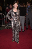 Amber Benson Photo - AMber Benson at the premiere of Warner Brothers Valentine Manns Chinese Theater 02-01-01