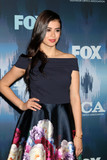 Amber Midthunder Photo - Amber Midthunderat the FOXTV TCA Winter 2017 All-Star Party Langham Hotel Pasadena CA 01-11-17