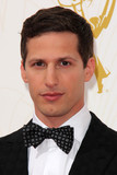 Andy Samberg Photo - Andy Sambergat the 67th Annual Primetime Emmy Awards Arrivals Microsoft Theater Los Angeles CA 09-20-15