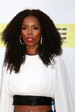 Tasha Smith Photo - LOS ANGELES - FEB 11  Tasha Smith at the 48th NAACP Image Awards Arrivals at Pasadena Conference Center on February 11 2017 in Pasadena CA