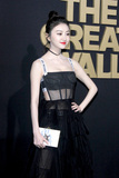 Jing Tian Photo - LOS ANGELES - FEB 15  Jing Tian at The Great Wall Premiere at the TCL Chinese Theater on February 15 2017 in Los Angeles CA