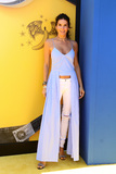 Angie Harmon Photo - LOS ANGELES - JUN 24  Angie Harmon at the Despicable Me 3 Premiere at the Shrine Auditorium on June 24 2017 in Los Angeles CA