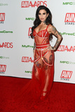 Joanna Angel Photo - LAS VEGAS - JAN 12  Joanna Angel at the 2020 AVN (Adult Video News) Awards at the Hard Rock Hotel  Casino on January 12 2020 in Las Vegas NV