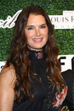 Brooke Shields Photo - Photo by John NacionstarmaxinccomSTAR MAX2017ALL RIGHTS RESERVEDTelephoneFax (212) 995-11969617Brooke Shields at The 2017 Couture Council Award Luncheon in New York City