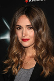 Rose Byrne Photo - Rose Byrne at the Breakthrough of the Year Awards (West Hollywood CA) 81510