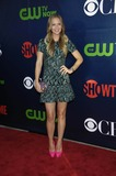 AJ Cook Photo - Photo by Michael GermanastarmaxinccomSTAR MAX2014ALL RIGHTS RESERVEDTelephoneFax (212) 995-119671714AJ Cook at the CBS CW and Showtime Television Critics Association (TCA) Summer Press Tour Party(West Hollywood CA)
