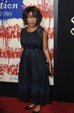 Alfre Woodard Photo - September 21 2016 LAAlfre Woodard arriving at the premiere of Fox Searchlight Pictures The Birth of a Nation at ArcLight Cinemas Cinerama Dome on September 21 2016 in Hollywood CaliforniaBy Line Peter WestACE PicturesACE Pictures IncTel 6467670430