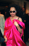 Liza Minnelli Photo - Singer DIANA ROSS leaves her uptown hotel to go to Liza Minnellis wedding New York March 16 2002  2002 by Alecsey BoldeskulNY Photo Press     PAY-PER-USE          NY Photo Press    phone (646) 267-6913     e-mail infocopyrightnyphotopresscom