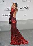 Aida Yespica Photo - Model Aida Yespica  at the 21st annual amfAR Cinema Against AIDS Gala at the Hotel du Cap dAntibesMay 22 2014  Antibes FrancePicture Paul Smith  Featureflash