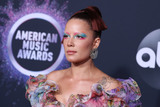 Marc Jacobs Photo - LOS ANGELES CALIFORNIA USA - NOVEMBER 24 Singer Halsey wearing Marc Jacobs arrives at the 2019 American Music Awards held at Microsoft Theatre LA Live on November 24 2019 in Los Angeles California United States (Photo by Xavier CollinImage Press Agency)